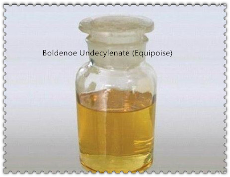 Bold_Undecylenate_Equipoise__副本.jpg
