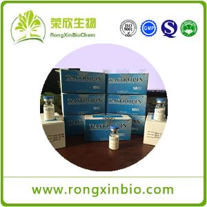 Human Growth Hormone Taitropin HGH CAS12629-01-5 Pure Medication Anabolic Steroids without Side Effects 10iu/Vial Factory Price