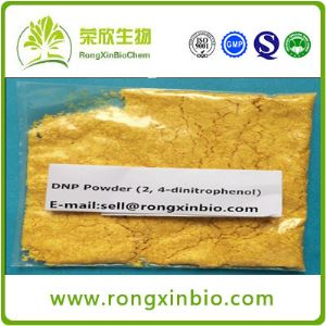 DNP CAS:51-28-5 High Quality Steroids Powder 2,4-Dinitrophenol (Dinitrophenol Powder )for Weight Loss
