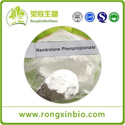 Nandrolone Phenylpropionate (NPP) CAS:62-90-8