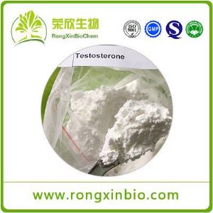 Testosterone powder