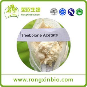 Trenbolone Acetate/Tren Acetate CAS10161-34-9 Steroids Powder Yellow Trenbolone Powder for Safe Body