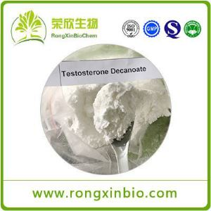 Testosterone Decanoate (Test Deca )CAS:5721-91-5